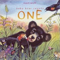 Baby Bear Counts One Hardcover Picture Book
