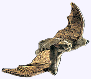 12 in. Brown Bat Hand Puppet with 24 in. wing span.