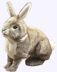 14 in. Cottontail Rabbit Hand Puppet