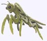 Praying Mantis Puppet