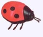7 in.Grouchy Ladybug Plush