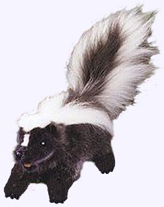 14 in. Skunk Hand Puppet
