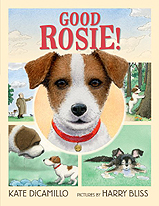 Good Rosie Hardcover Picture Book