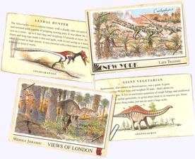 Factoid Cards in Dinosaur Hardcover Picture Book