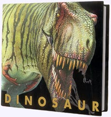 Dinosaur Hardcover Picture Book